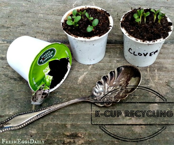 K Cups as planters