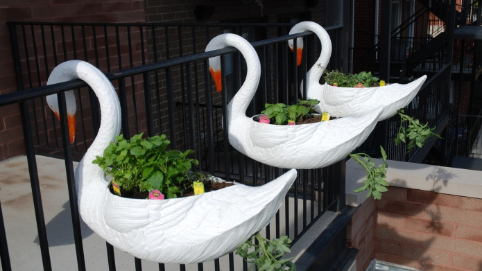 17 Wacky planters you will totally
