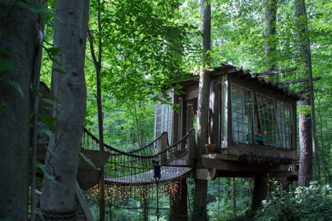 A treehouse with a bridge