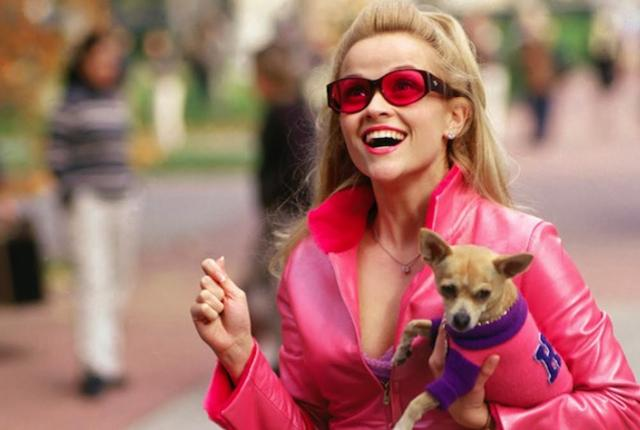 Reese Witherspoon and dog in Legally Blonde