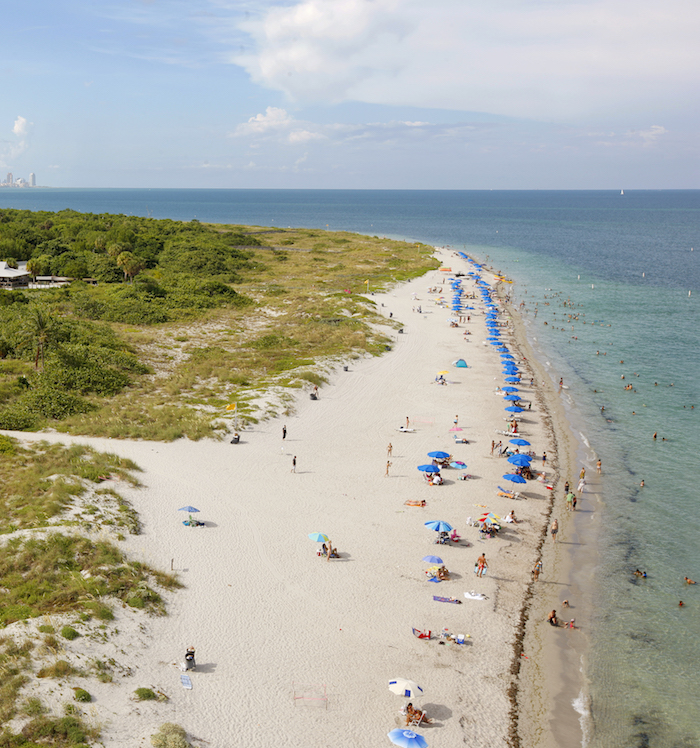 Key Biscayne Mom's Guide to Miami