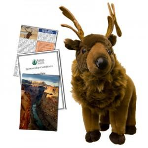 Go wild with this gift from
