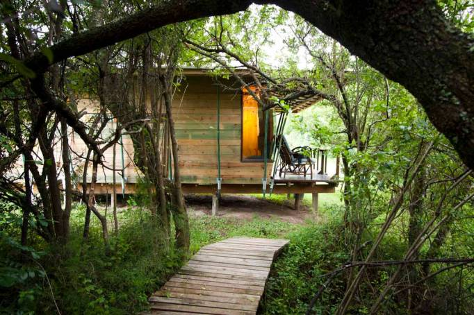 Last-Minute Valentine's Day Getaway on AirBnb: Eco Lodge in Eastern Cape, South Africa