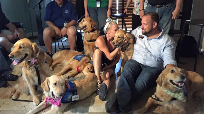 Comfort dogs flock to Orlando to