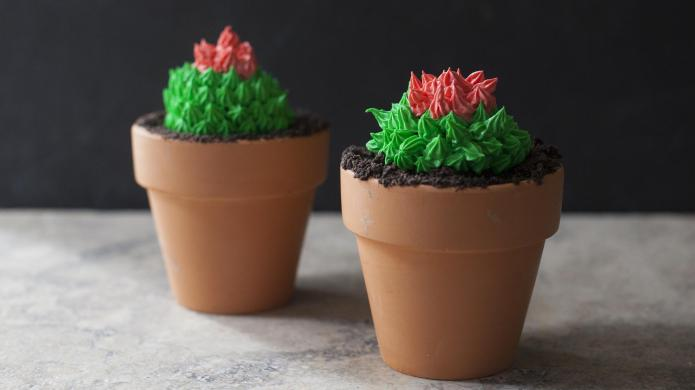 Cactus cupcakes in terra-cotta pots look