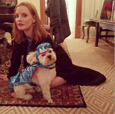 Jessica-Chastain-dog