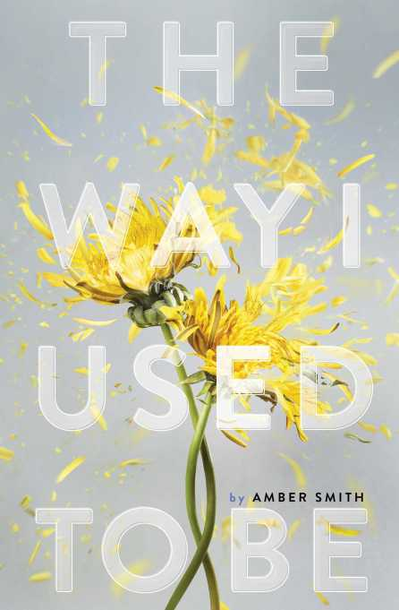 "7 Books To Start The Conversation About Sexual Assault: ""The Way I Used To Be"" by Amber Smith"