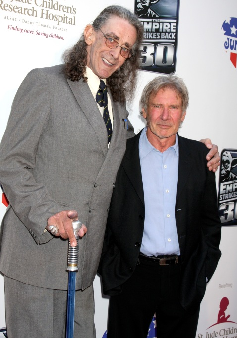 Peter Mayhew and Harrison Ford