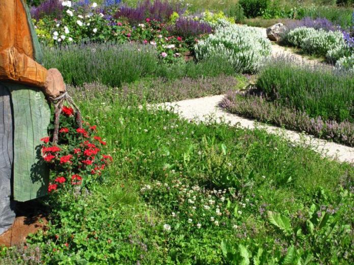 French Herb Garden