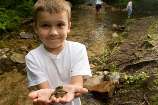 Little boy holding frog