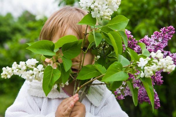 Little girl in botanical garden