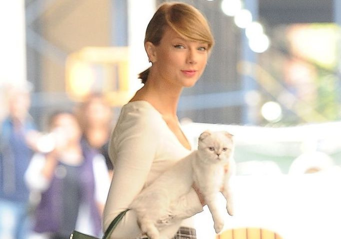 Celebs who love cats: Taylor Swift