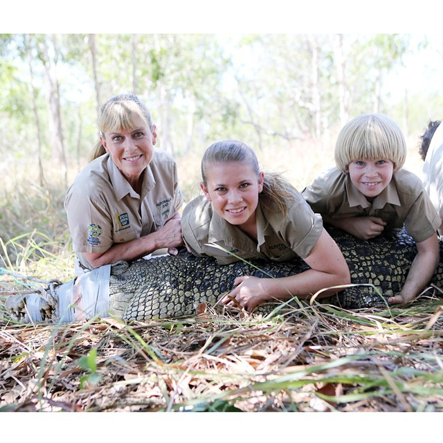 bindi-irwin-crocodiles