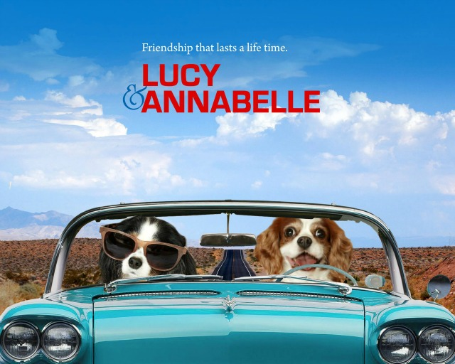 Lucy and Anabelle rescue dogs calendar