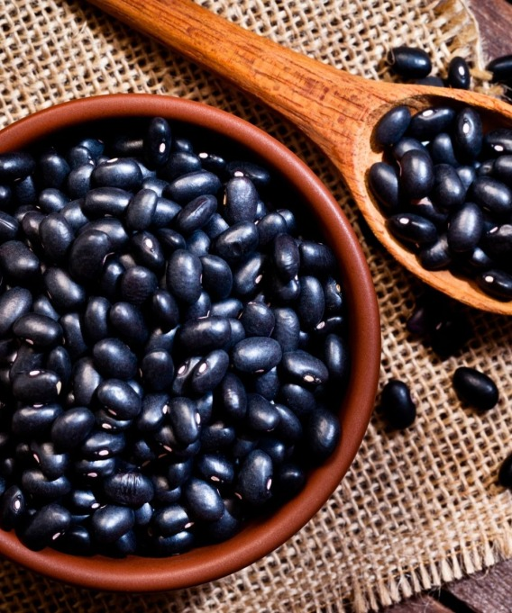 black beans in bowl and in wooden spoon