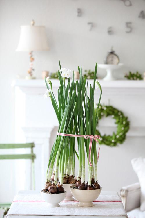 Take your home decor from winter