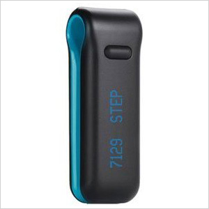 Fitbit Wireless Personal Trainer