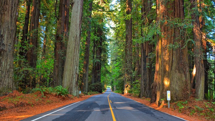50 of the most scenic drives