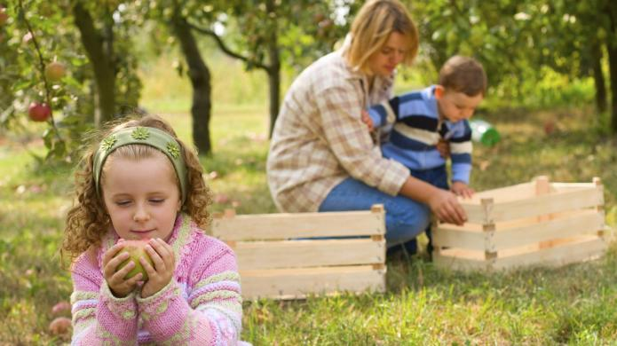 7 Educational nature activities you should