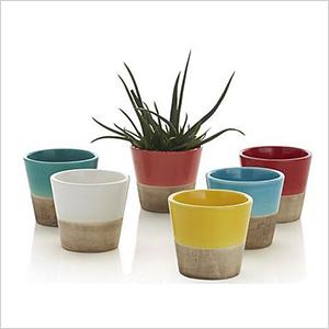 Mini planters | Sheknows.com
