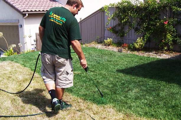 Homeowners desperate for green grass turn