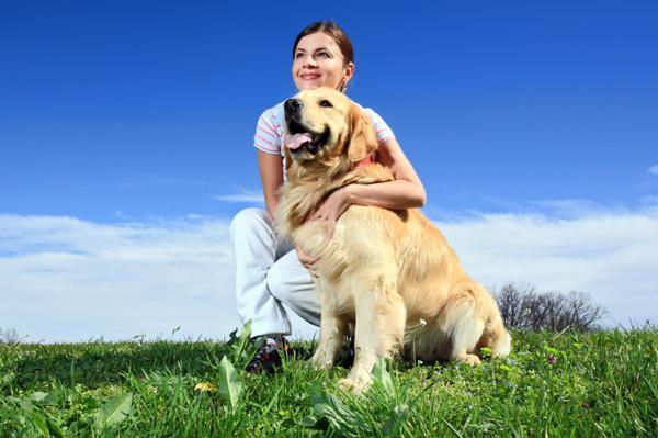 Environmentally-friendly dogs