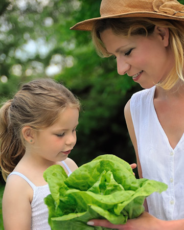 mom and daughter growing lettuce in a garden