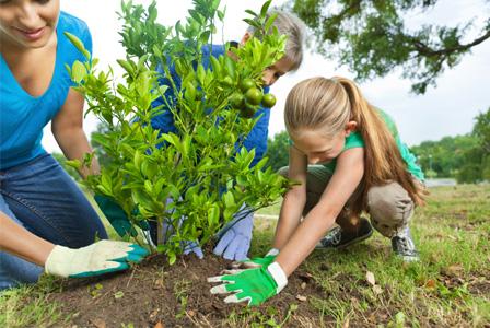 Mom planting tree with kids