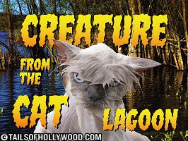 Creature from the Cat Lagoon
