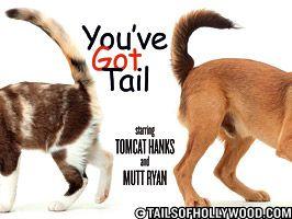 You've Got Tail