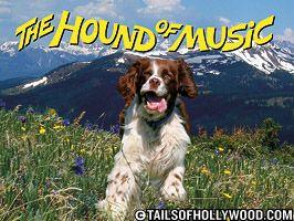 The Hound of Music