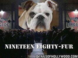 Nineteen Eighty-Fur