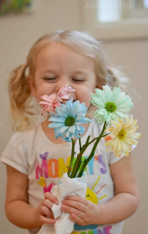 Kids Science Experiments and Projects for School: The flower experiment