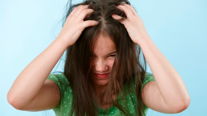 Brace yourself — drug-resistant lice are