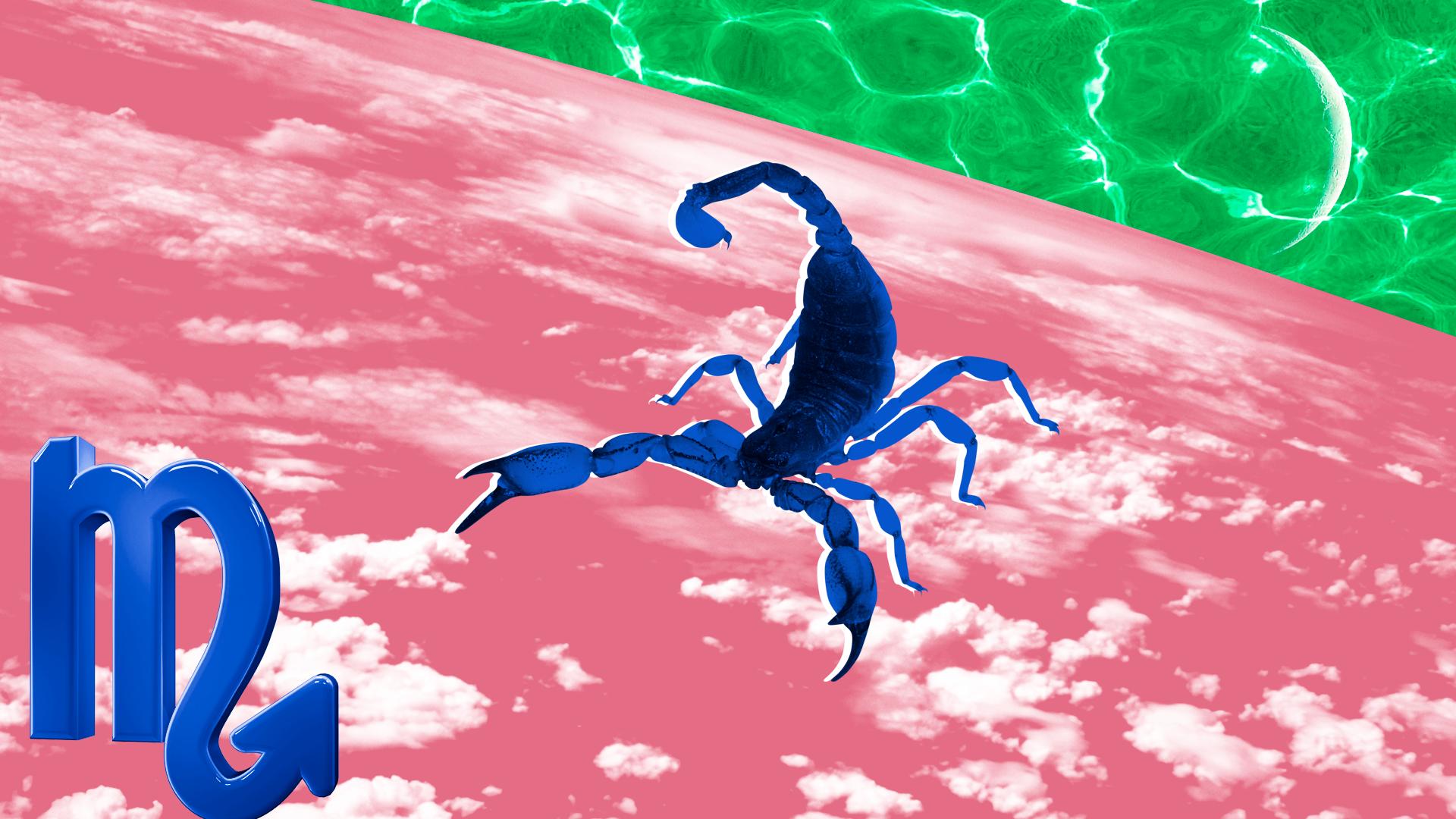 sheknows weekly horoscope