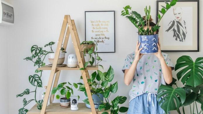 11 Pinterest Fall Decor Trends We're