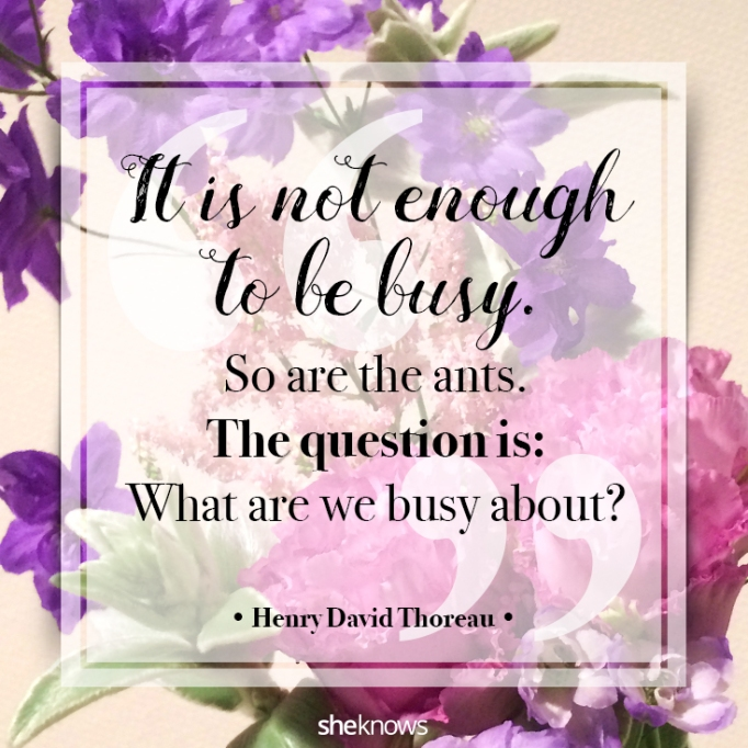 """""""It is not enough to be busy. So are the ants. The question is: What are we busy about?"""" Henry David Thoreau"""