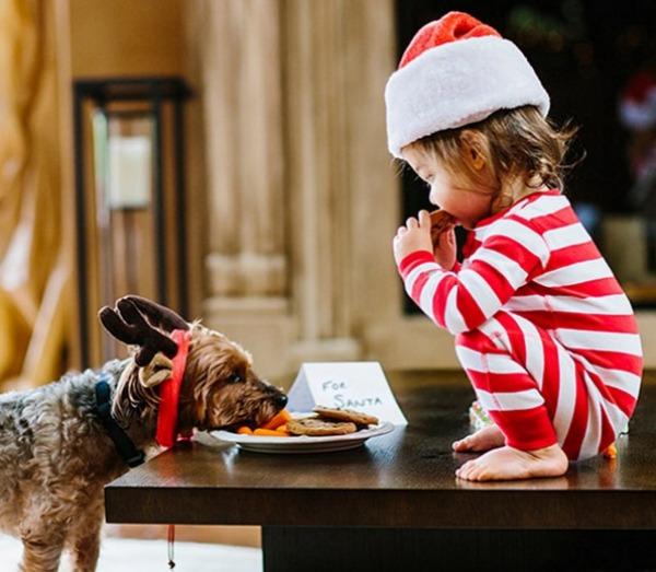 Vanessa and Nick Lachey's Christmas card