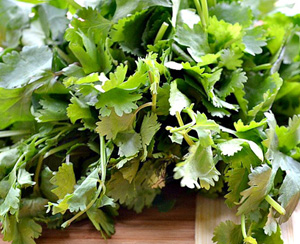 Lush herbs & spices