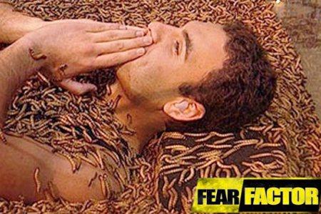 NBC's Fear Factor returns Dec. 12