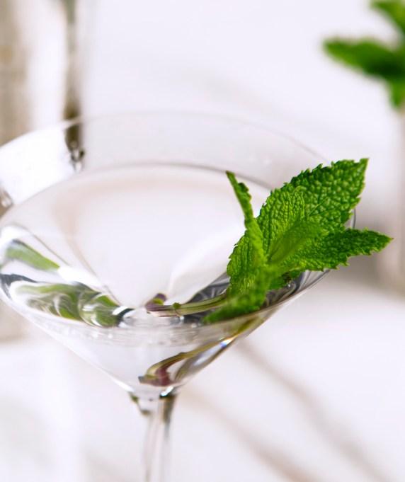 Mint julep martini