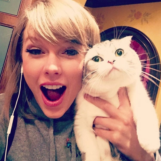 Taylor Swift & Meredith cat