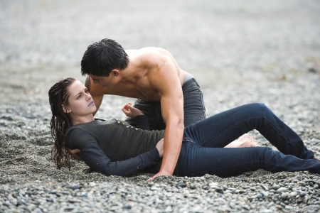 Kristen Stewart and Taylor Lautner in New Moon, out November 20