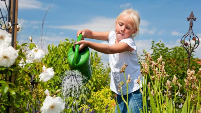Conserving Water in the Garden