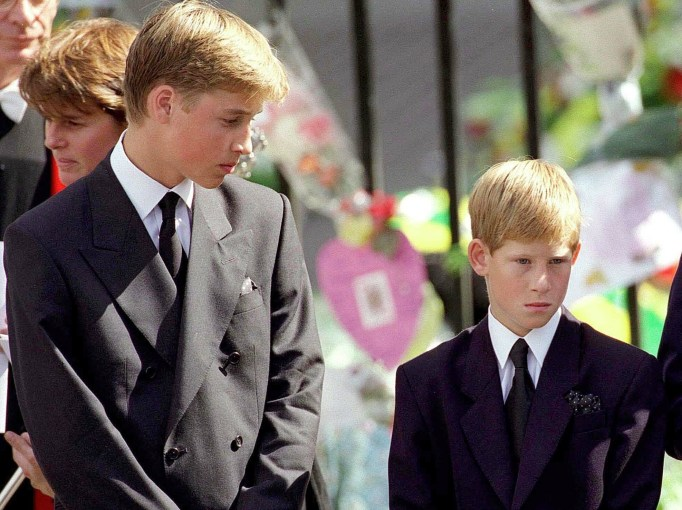 Young Prince Harry and Young Prince William