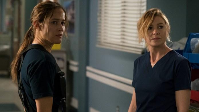 Grey's Anatomy Stars Might Make Crossover
