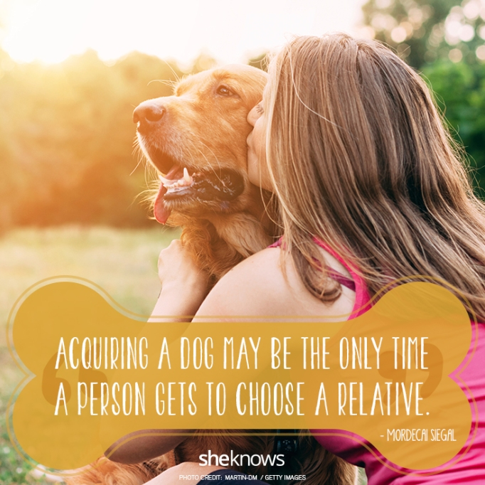 """""""Acquiring a dog may be the only time a person gets to choose a relative."""" —Mordecai Siegal"""
