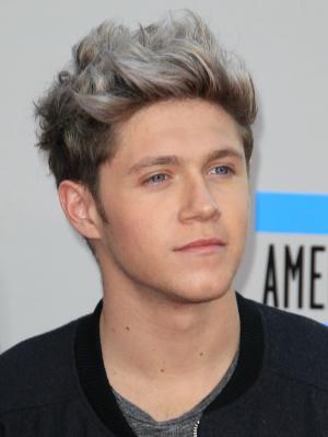 Niall Horan hair