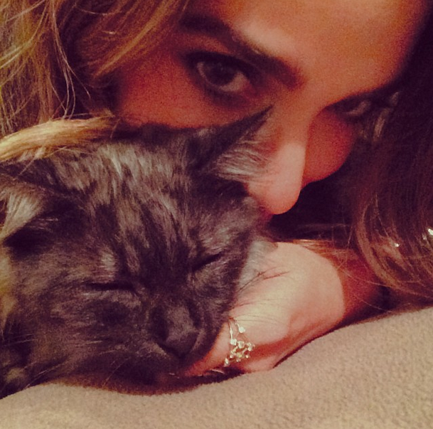 Nikki Reed and boyfriend Ian Somerhalder adopt a kitten