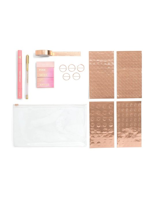 Ban.do planner starter pack in rose gold
